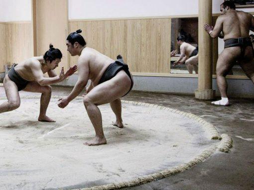 体躯:相撲のための闘い (The bondsmen; Fighting for Sumo)